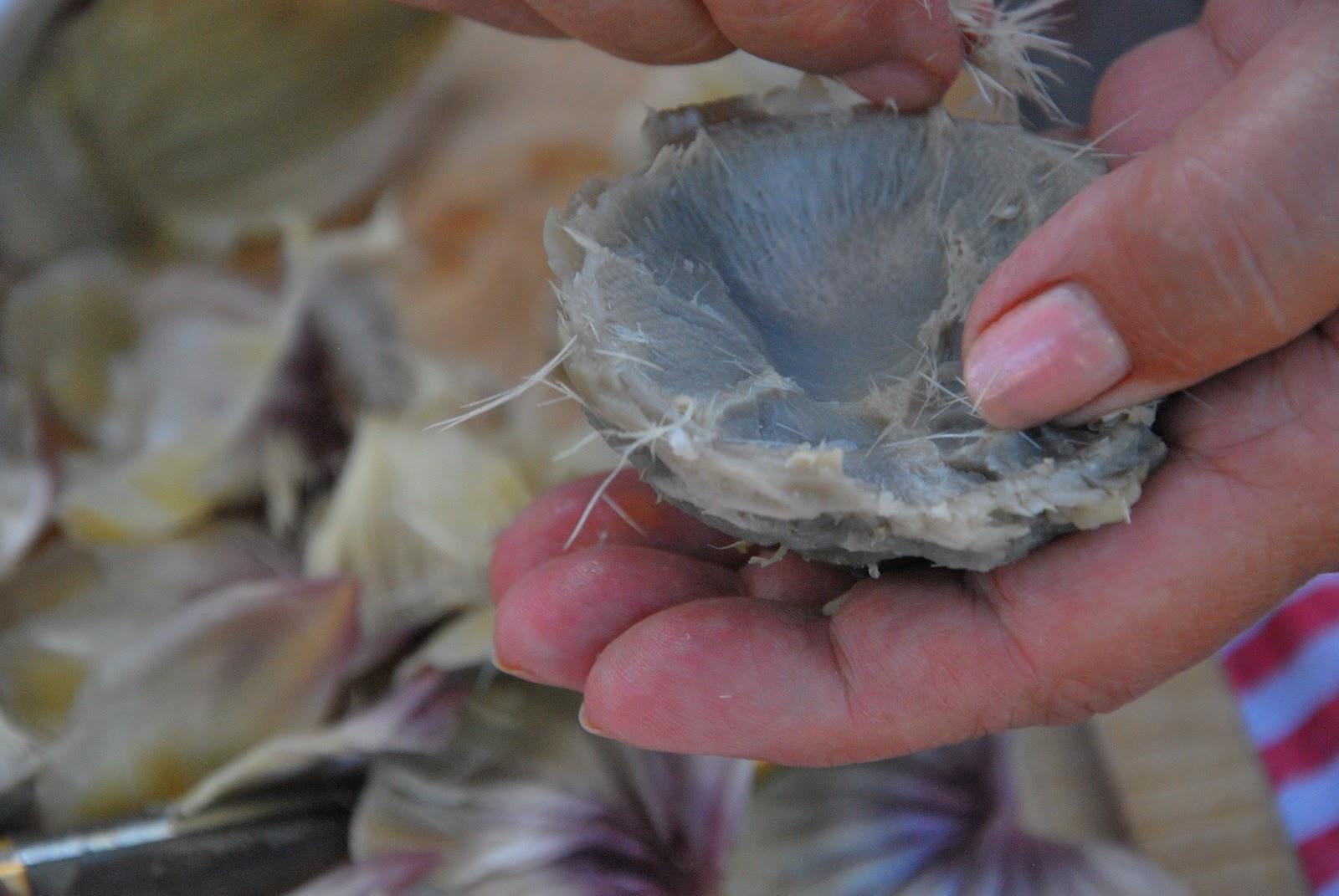 hands peeling an artichoke bottom