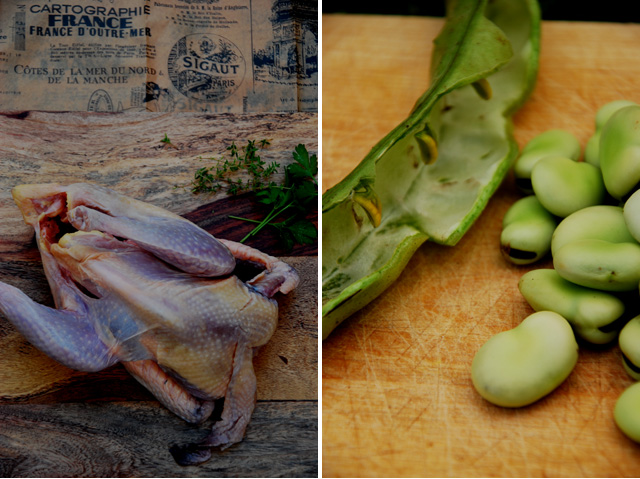 Fava beans, guineafowl… and life lessons in the kitchen