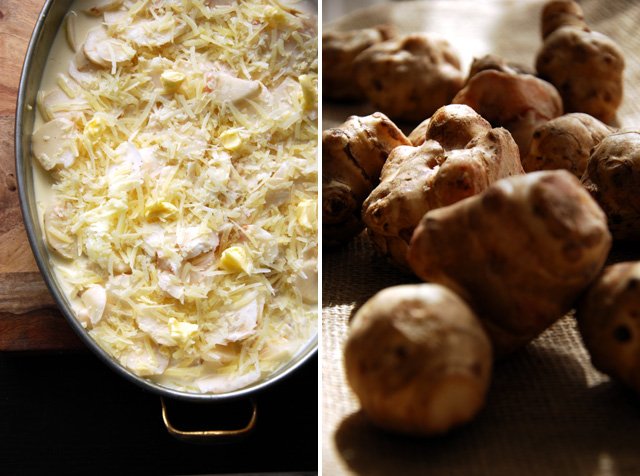 Sunchokes, in a gratin pan covered with cream and cheese